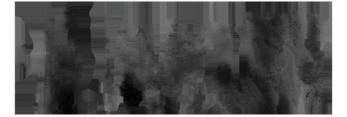 Ali Lauren logo